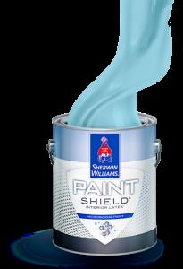 Paint Shield
