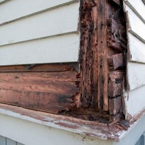 Exterior painting to prevent wood rot